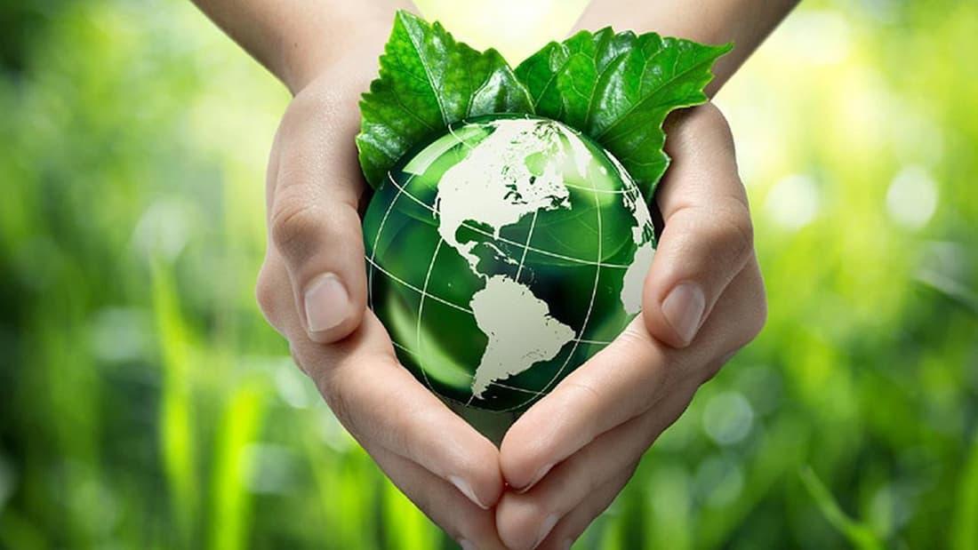 ИКЕА заботится об окружающей среде