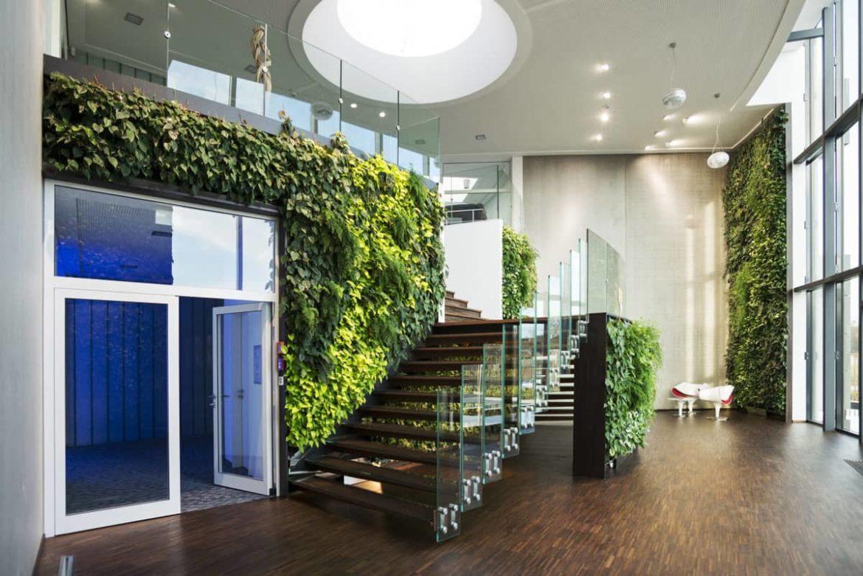Вертикальное озеленение в офисных пространствах
